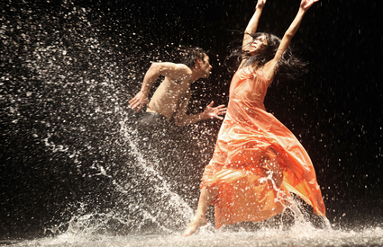 Tanztheater Wuppertal Pina Bausch production of Vollmond during BAM Next Wave Festival, 2010. Photo by Julieta Cervantes, courtesy of BAM Hamm Archives.